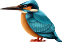 голубая птица, отряд пернатых, фауна, a feathered squad, blue bird, feathered squad, blauer vogel, gefiederter trupp, oiseau bleu, escouade à plumes, faune, pájaro azul, escuadrón emplumado, uccello blu, squadra piumata, pássaro azul, pelotão emplumado, fauna, блакитний птах, загін пернатих