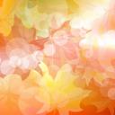 текстура природа, желтый лист, осень, texture nature, yellow leaf, autumn, textur natur, gelbes blatt, herbst, nature texture, feuille jaune, automne, textura de la naturaleza, hoja amarilla, otoño, tessitura natura, foglio giallo, autunno, a natureza da textura, folha amarela, outono, жовтий лист, осінь