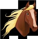 животные, конь, голова лошади, лошадь, animals, horse head, horse, tiere, pferdekopf, pferd, animaux, tête de cheval, cheval, animales, cabeza de caballo, caballo, animali, testa di cavallo, cavallo, animais, cabeça de cavalo, cavalo, тварини, кінь, голова коня