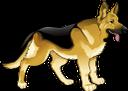 собака, животные, фауна, dog, animals, hund, tiere, chien, animaux, faune, perro, animales, cane, animali, cão, animais, fauna, тварини