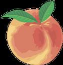 персик, спелый персик, оранжевый, фрукты, стиглий персик, помаранчевий, фрукти, peach, ripe peach, fruit, pfirsich, reifer pfirsich, obst, pêche, pêche mûre, orange, fruits, melocotón, melocotón maduro, naranja, fruta, pesca, pesca matura, arancia, frutta, pêssego, pêssego maduro, laranja, frutos