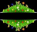 трава, полевые цветы, баннер, растения, природа, grass, wildflowers, plants, gras, wildblumen, banner, pflanzen, natur, herbe, fleurs sauvages, bannière, plantes, nature, hierba, pancarta, naturaleza, erba, fiori di campo, bandiera, piante, natura, grama, flores silvestres, bandeira, plantas, natureza, польові квіти, банер, рослини