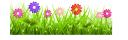 экология, зеленое растение, зеленая трава, цветы, ecología, hierba verde, ecologia, planta verde, grama verde, flores, écologie, plante verte, l'herbe verte, des fleurs, ökologie, grüne pflanze, grünes gras, blumen, ecology, green plant, green grass, flowers