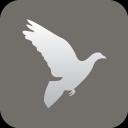 christianity peace dove icon