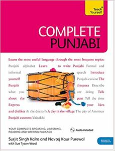 Books To Learn Punjabi Through English| Multibhashi