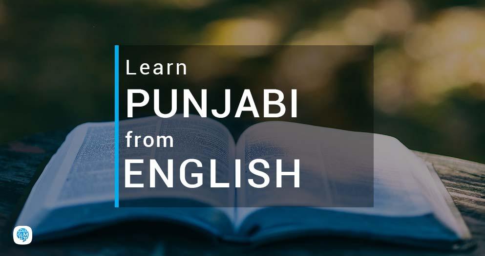Books To Learn Punjabi Through English| Multibhashi