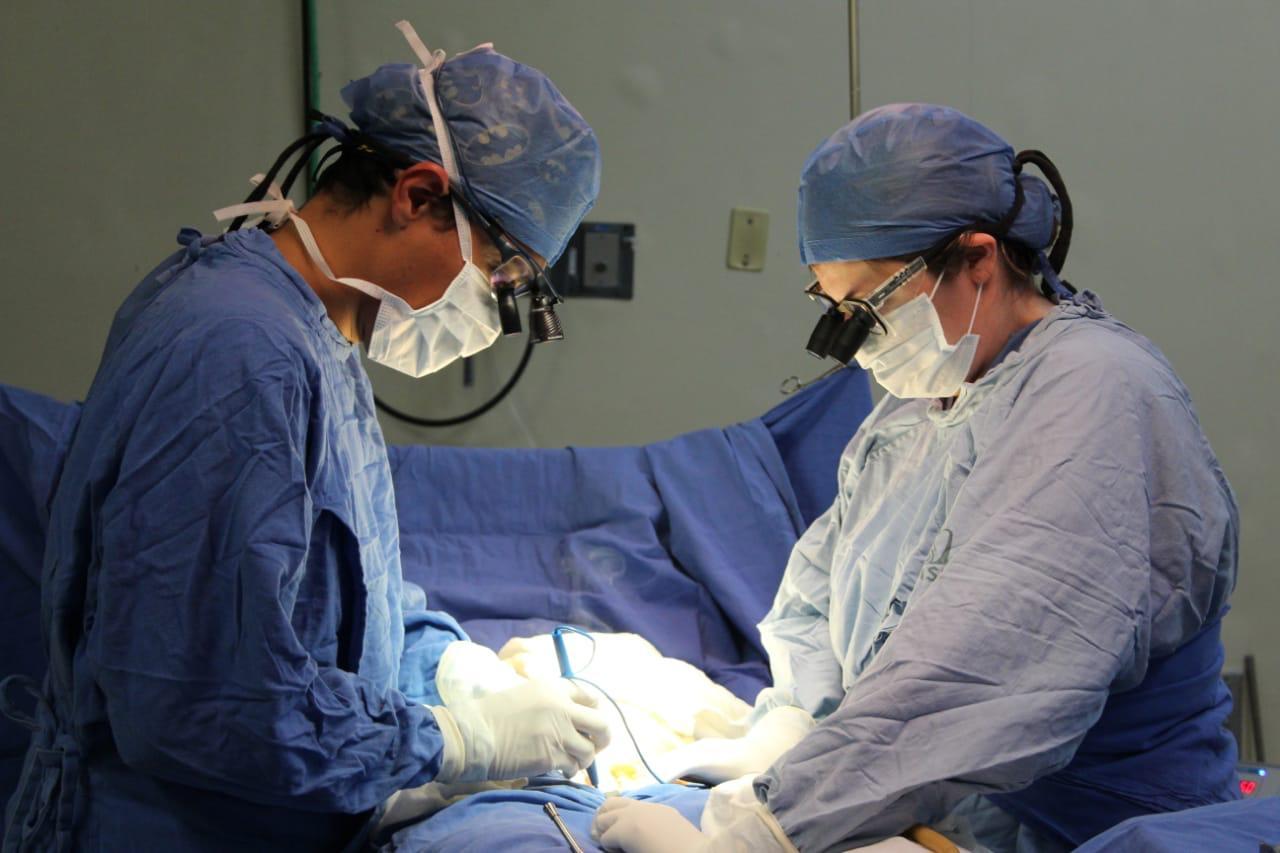 IMSS realiza donación multiorgánica en hospital de Magdalena de las Salinas - MVS Noticias