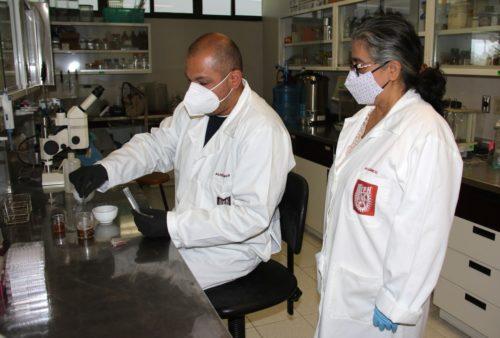 Científicos IPN