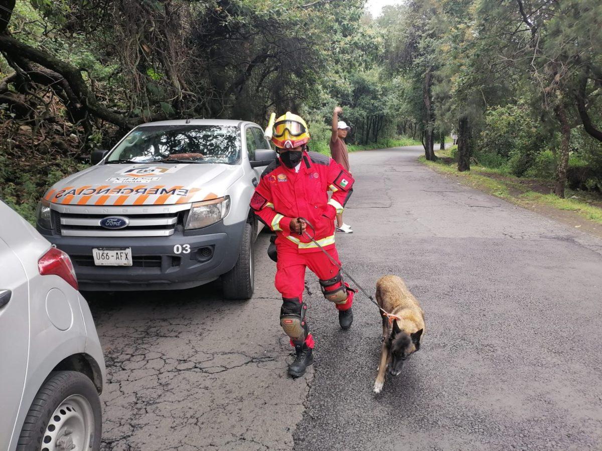 Binomio Canino / Ilustración / Foto Julio Álvarez de la brigada Animal de la UNAM