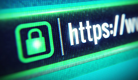iHOUSE Elite websites are secured with SSL Encryption.