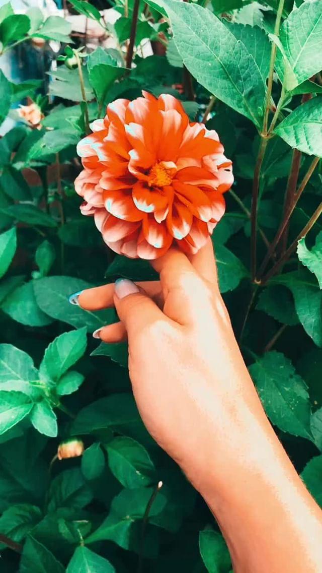 Instagram filter Orange blue
