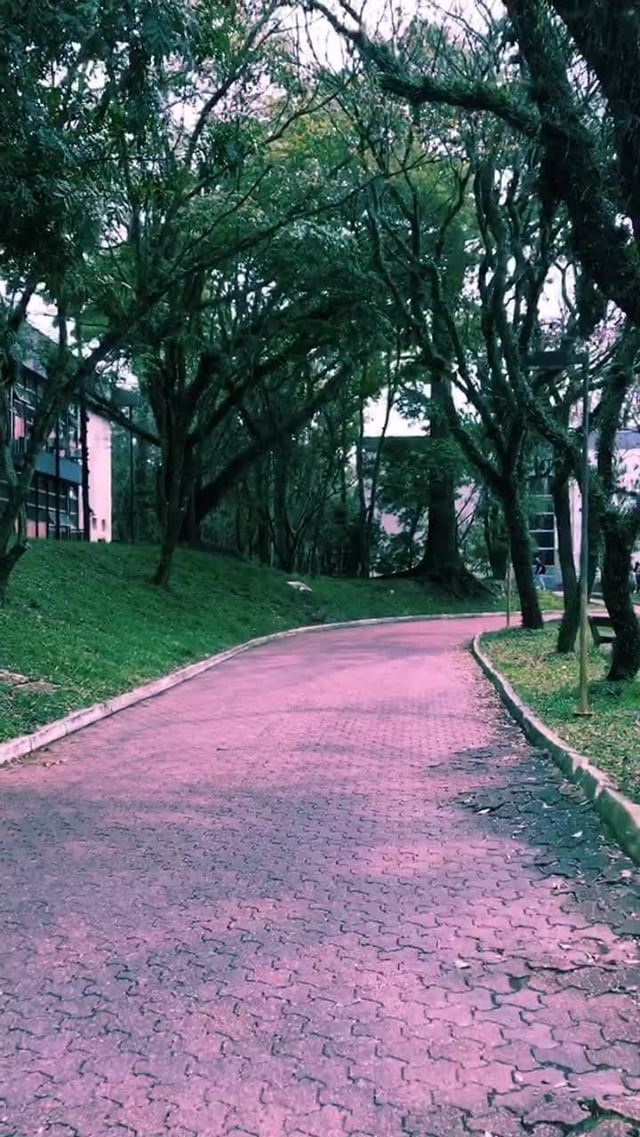 Instagram filter Pink'N'Blue