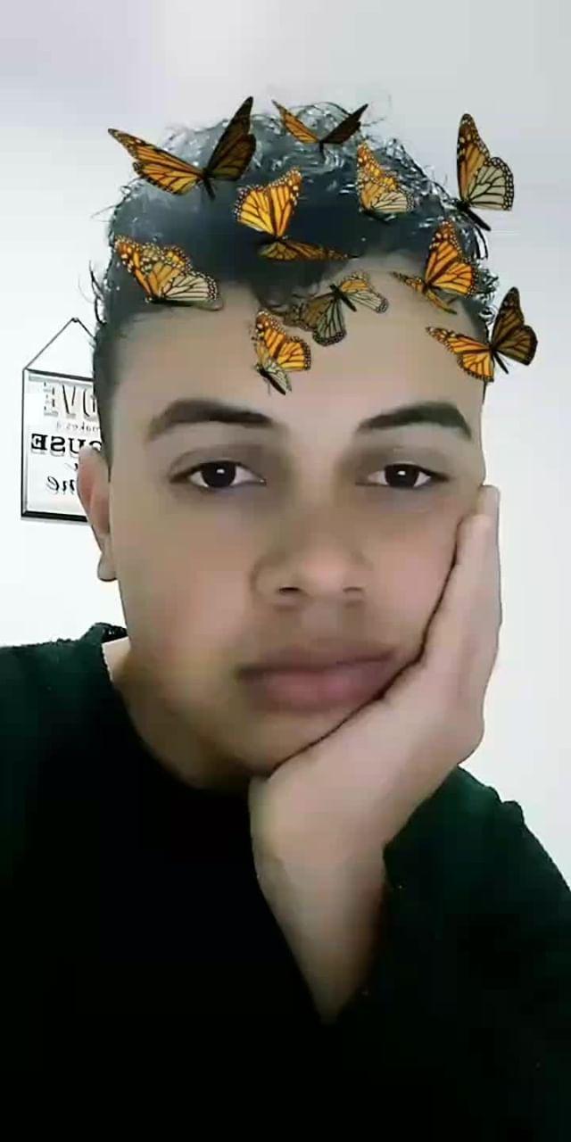 Instagram filter borboletas