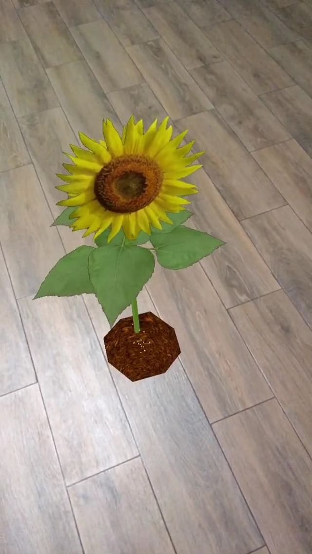 Instagram filter SunFlower