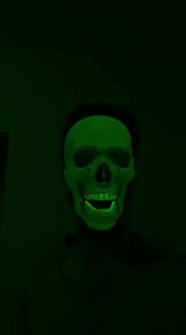 janpetrina_b Instagram filter X-Ray Skull