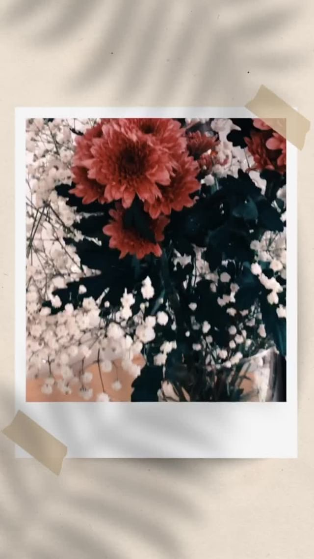 Instagram filter Polaroid