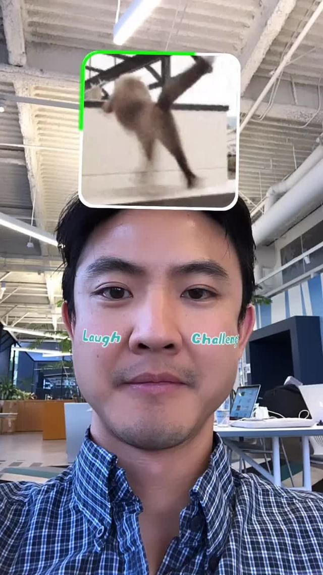 at.augmented Instagram filter Can't Laugh - Animal