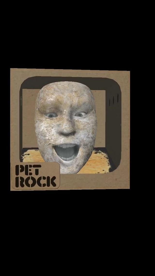 Instagram filter Pet Rock