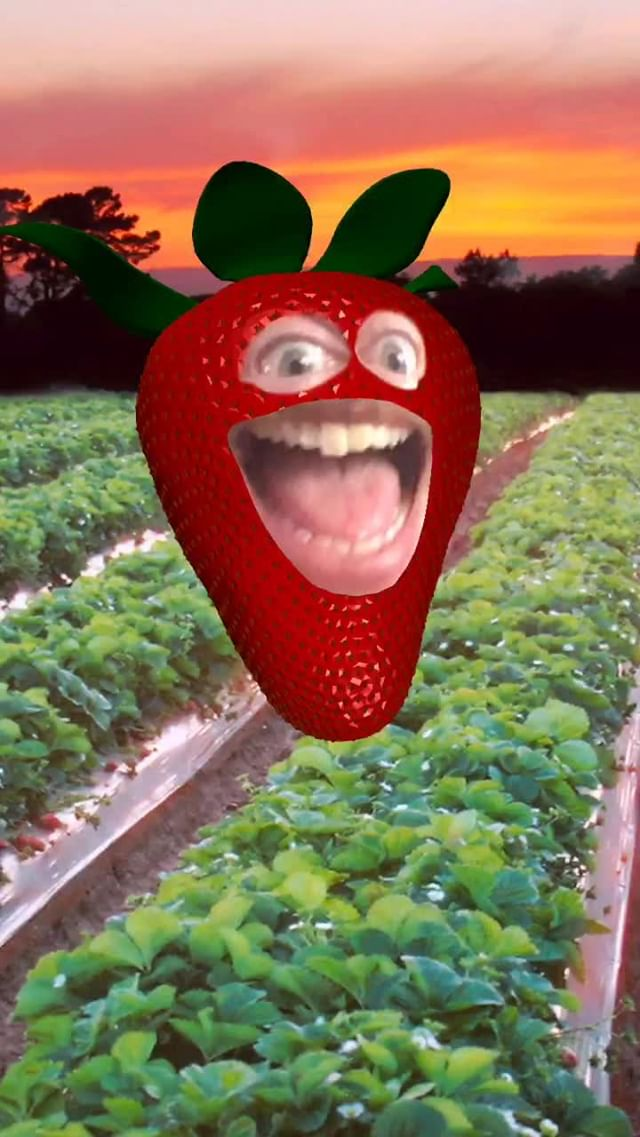 anonamister Instagram filter Just a Strawberry