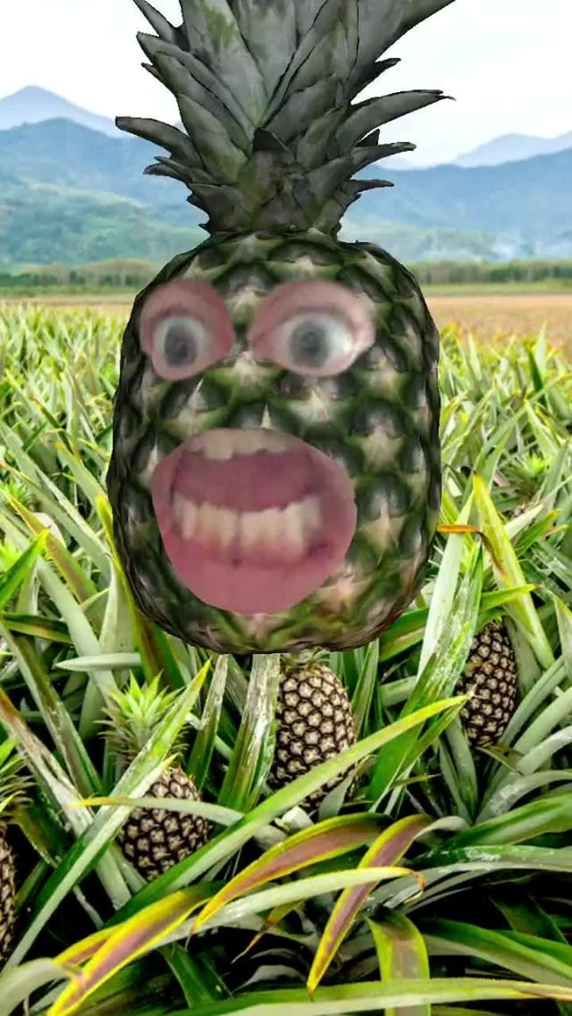 Instagram filter It's The Pineapple!