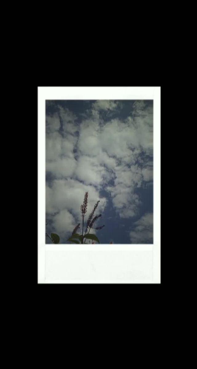 nahir.esper Instagram filter Pola