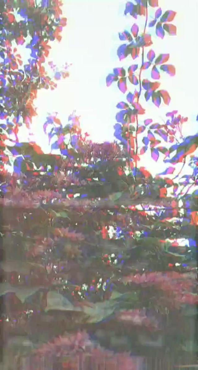 nahir.esper Instagram filter VCR