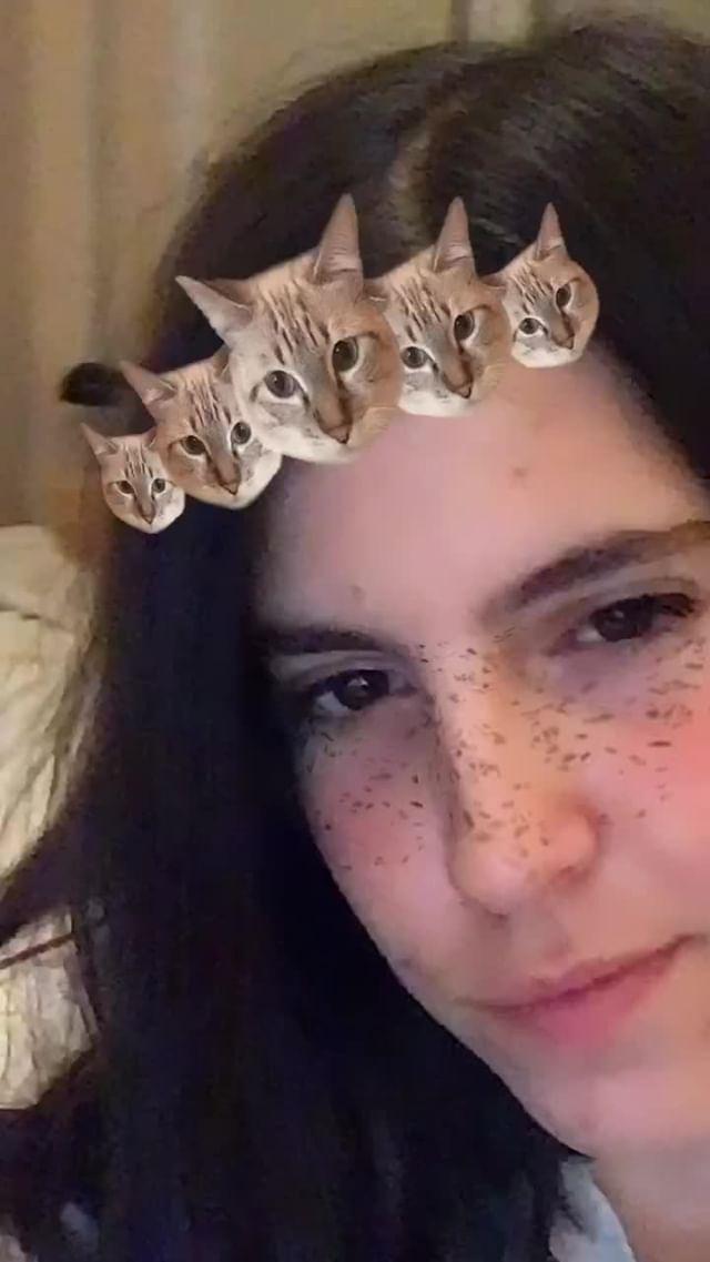 Instagram filter my cat Kendall