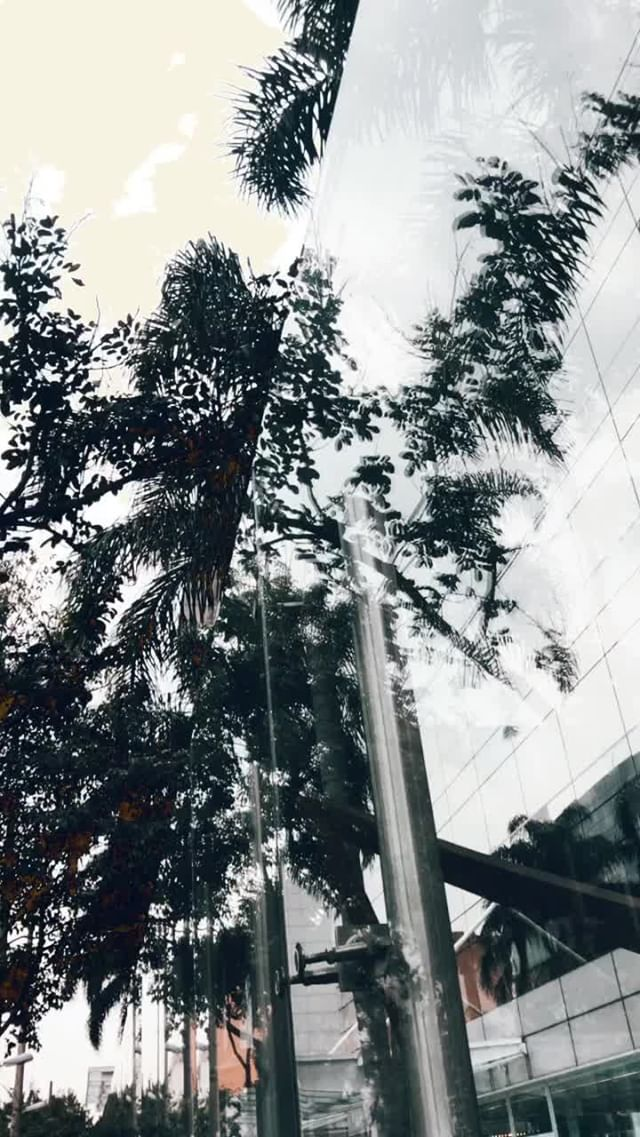Instagram filter preset life
