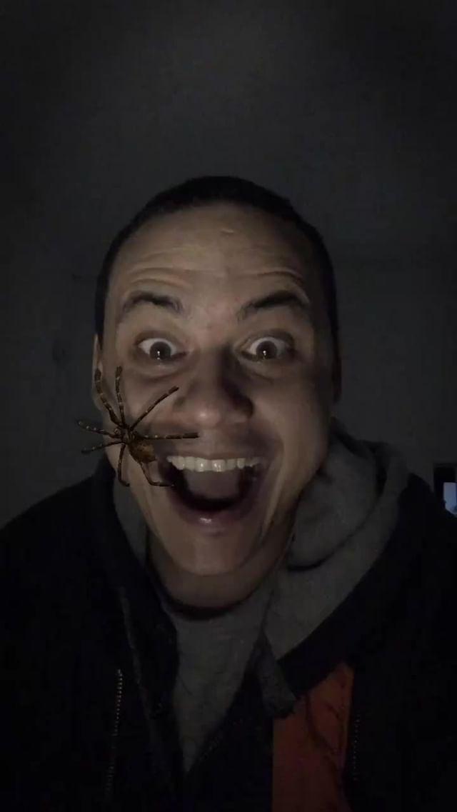 nelzster01 Instagram filter Arachnophobia