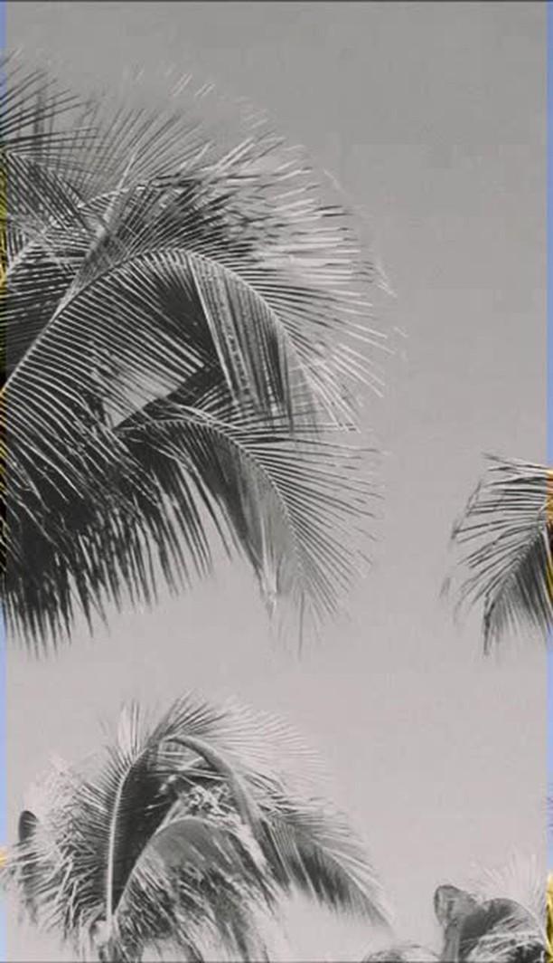 Instagram filter white & black