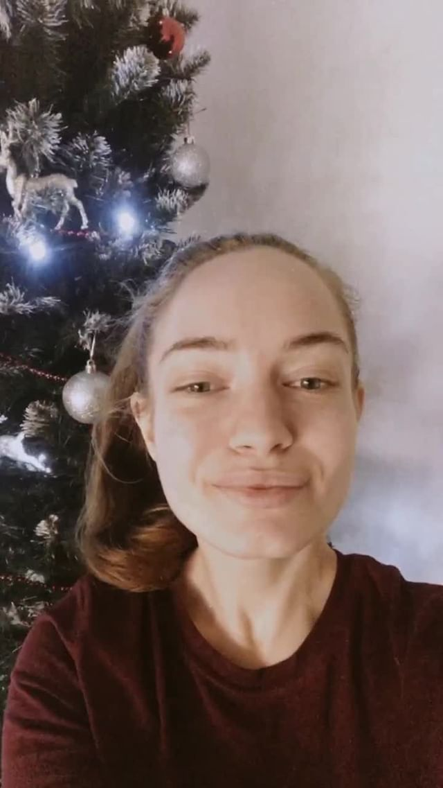 grishaeva.law Instagram filter Christmas Brown 1