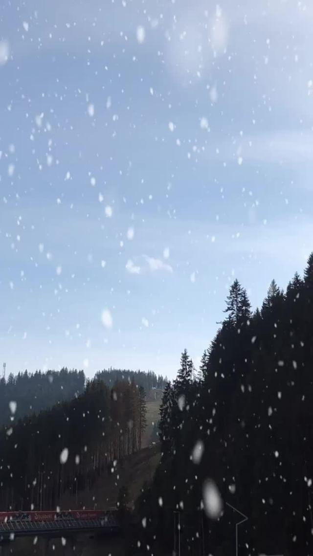 grishaeva.law Instagram filter Snow Animation