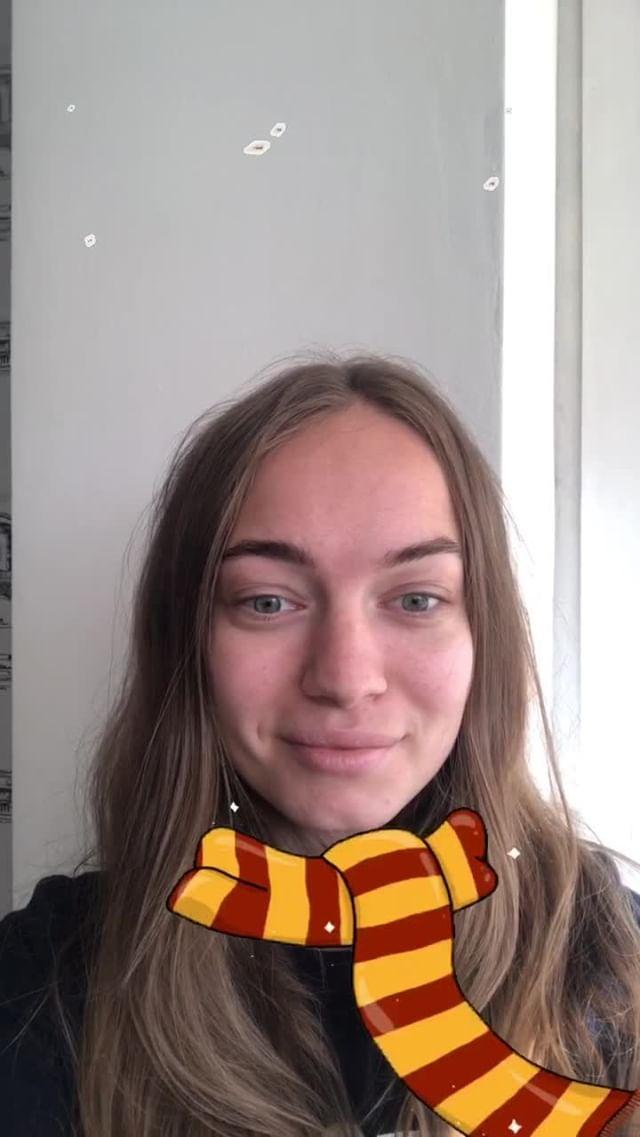 grishaeva.law Instagram filter Hogwarts