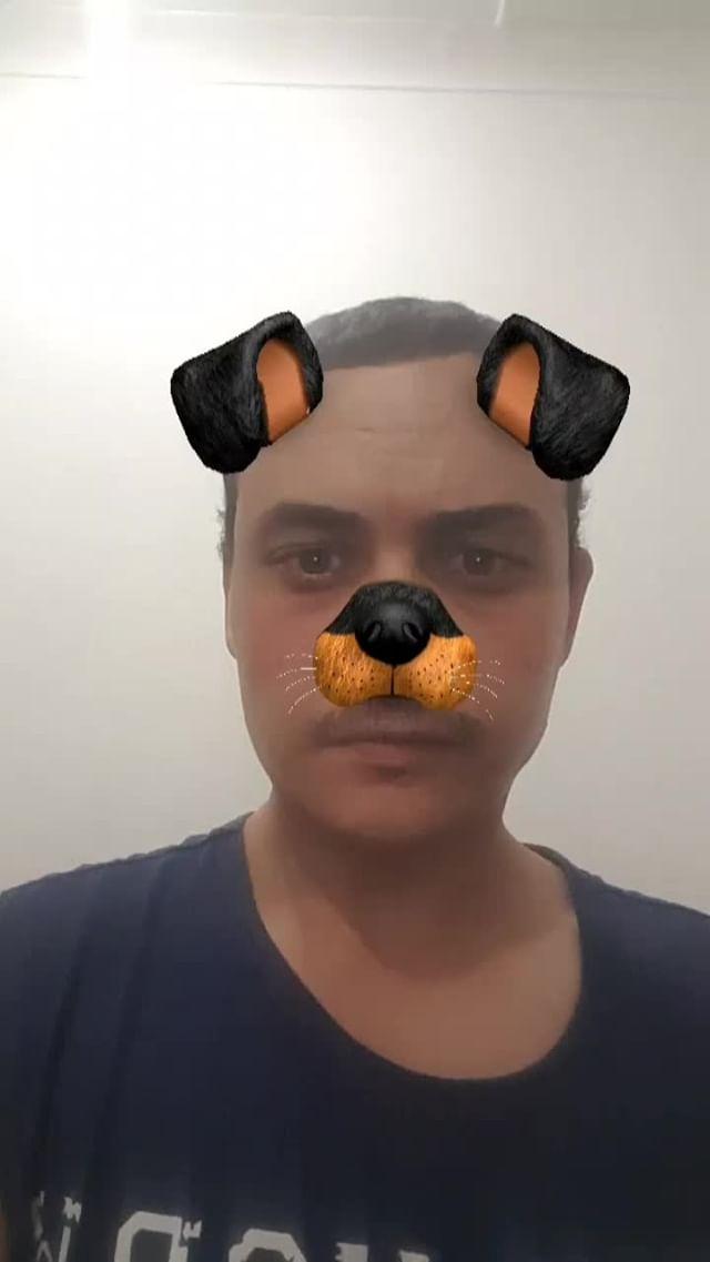 Instagram filter Puppy Dog