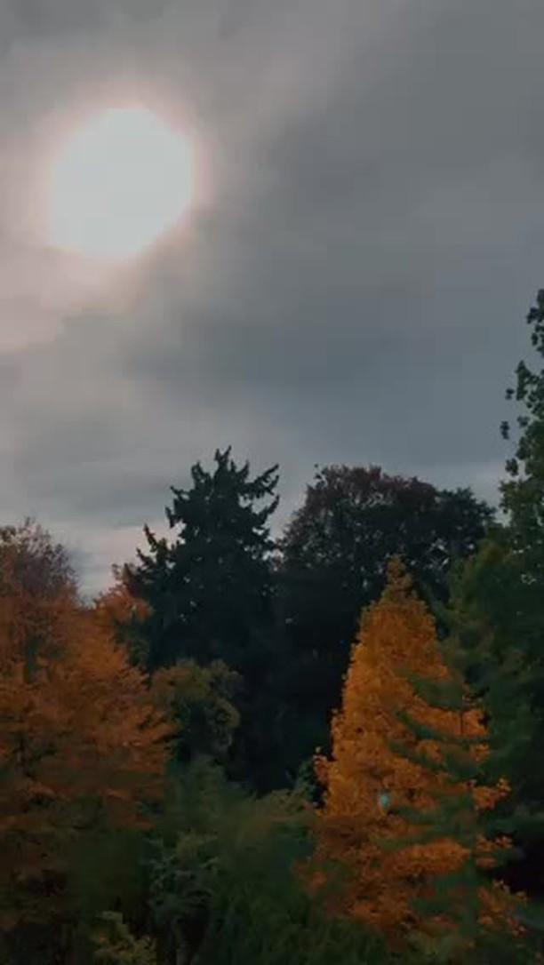 tori.smi Instagram filter Herbst Presets