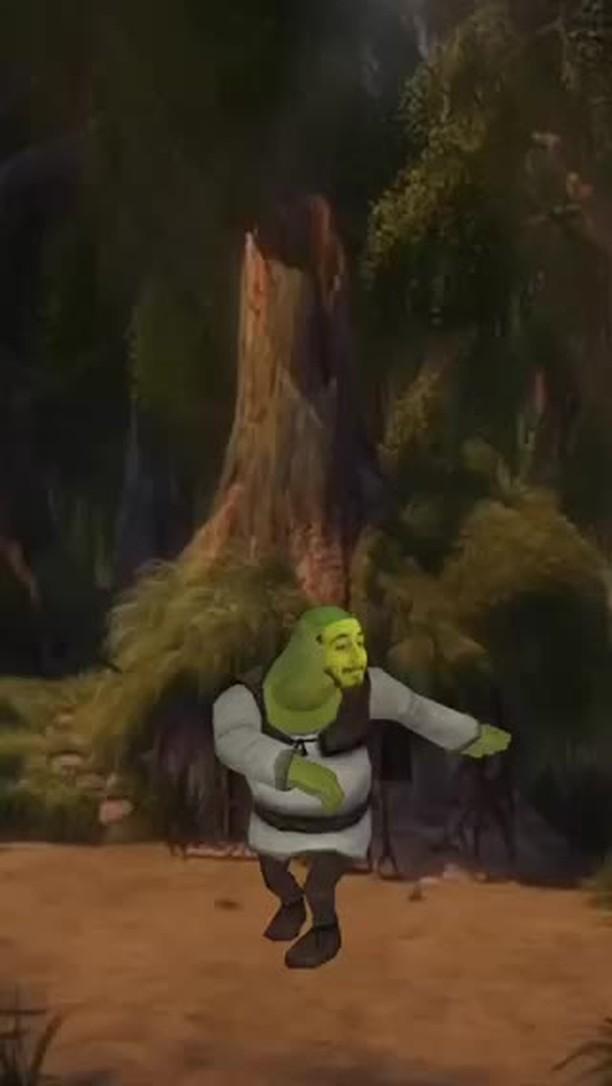 novoxyt Instagram filter Shrek Dance
