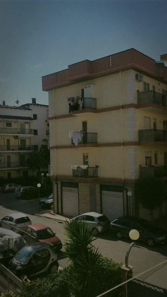 Instagram filter disposable camera