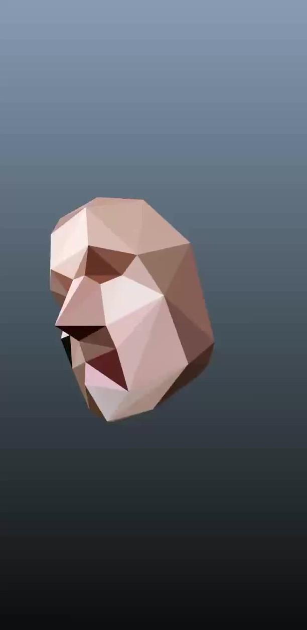 Instagram filter Polygonal Face