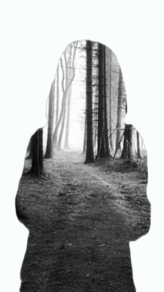 Instagram filter Silhouette Forrest U