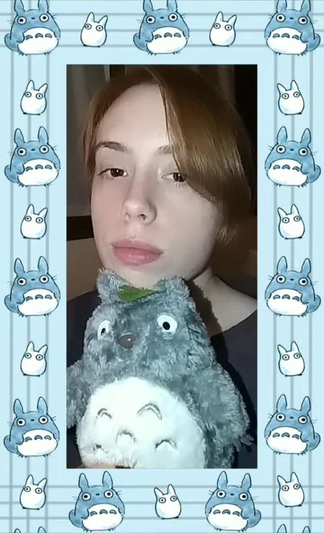 Instagram filter Chu Totoro