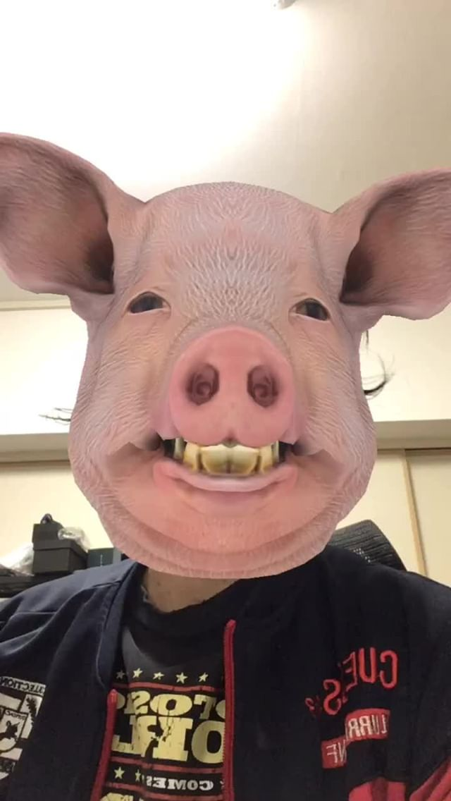Instagram filter AnimalHead-Pig
