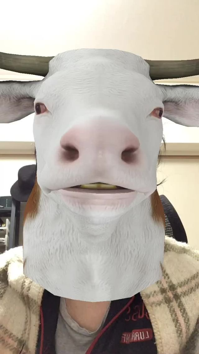 Instagram filter AnimalHead-Cow