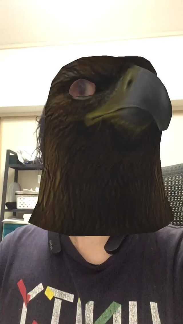 Instagram filter AnimalHead-Eagle