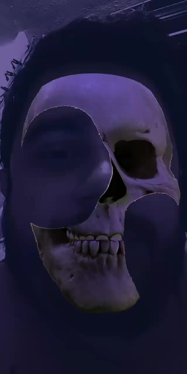 vimneto Instagram filter skull
