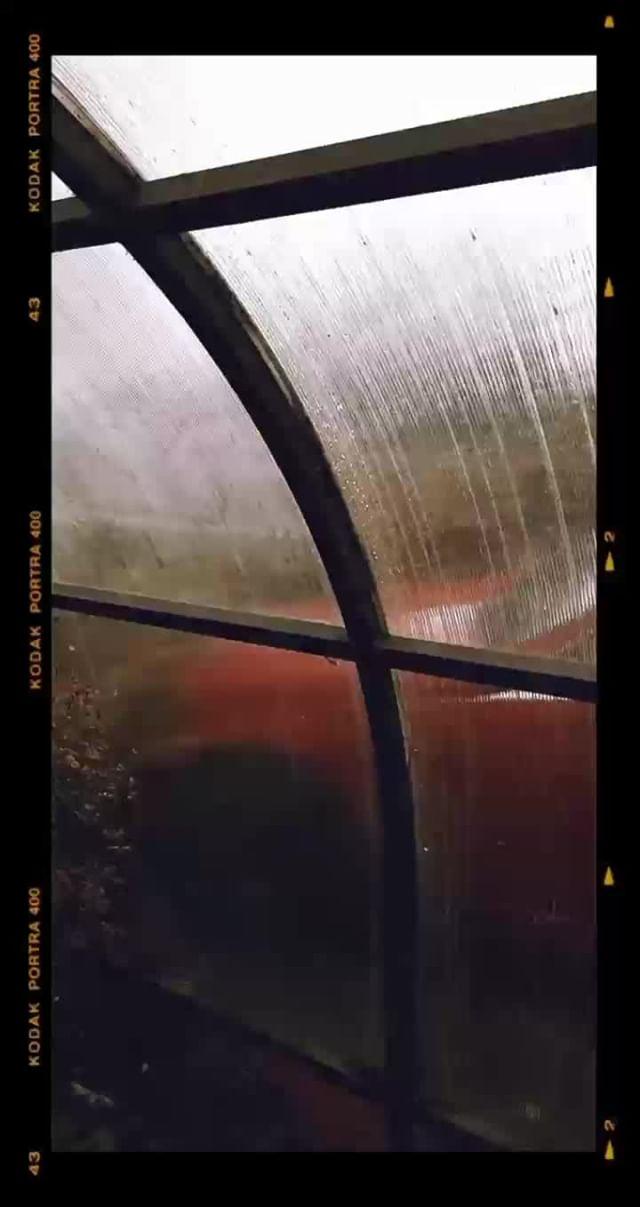 Instagram filter Kodak Portra 400