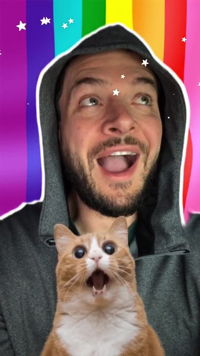 Instagram filter Pride Cat