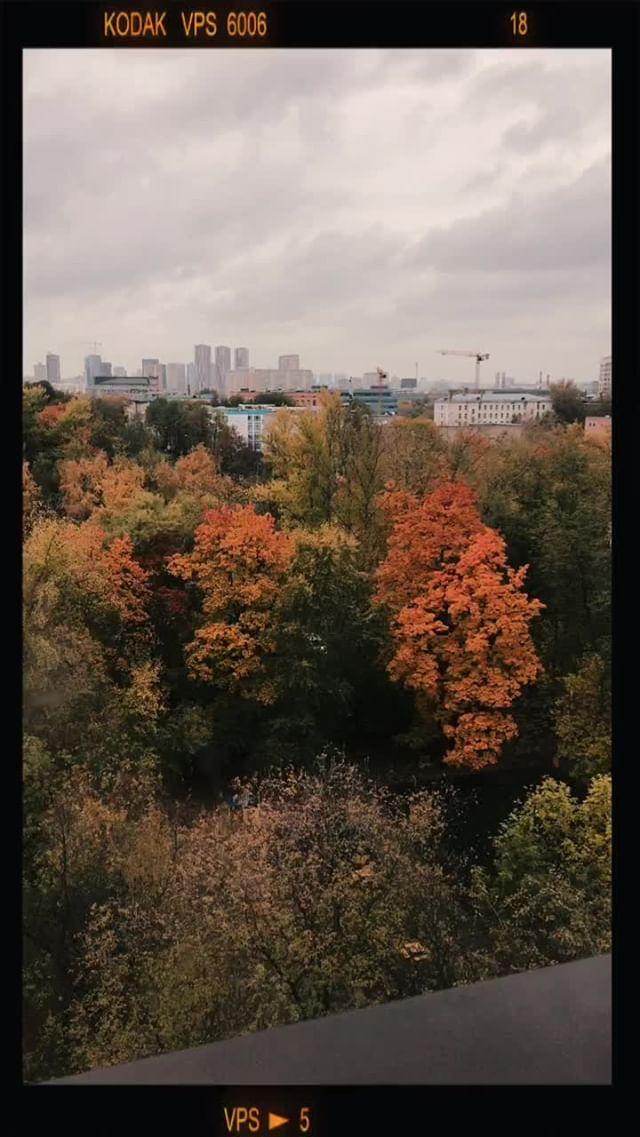 Instagram filter Осенний