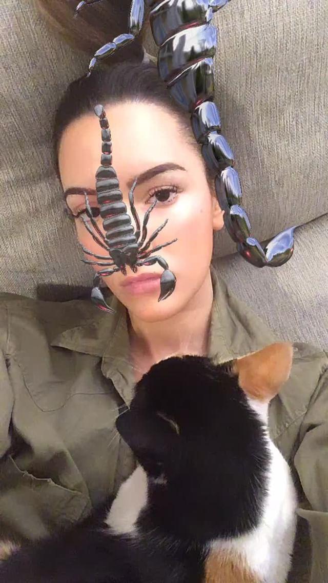 Instagram filter scorpion