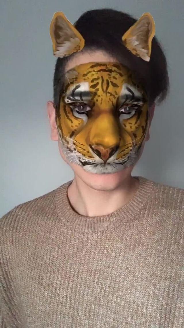 Instagram filter tiger