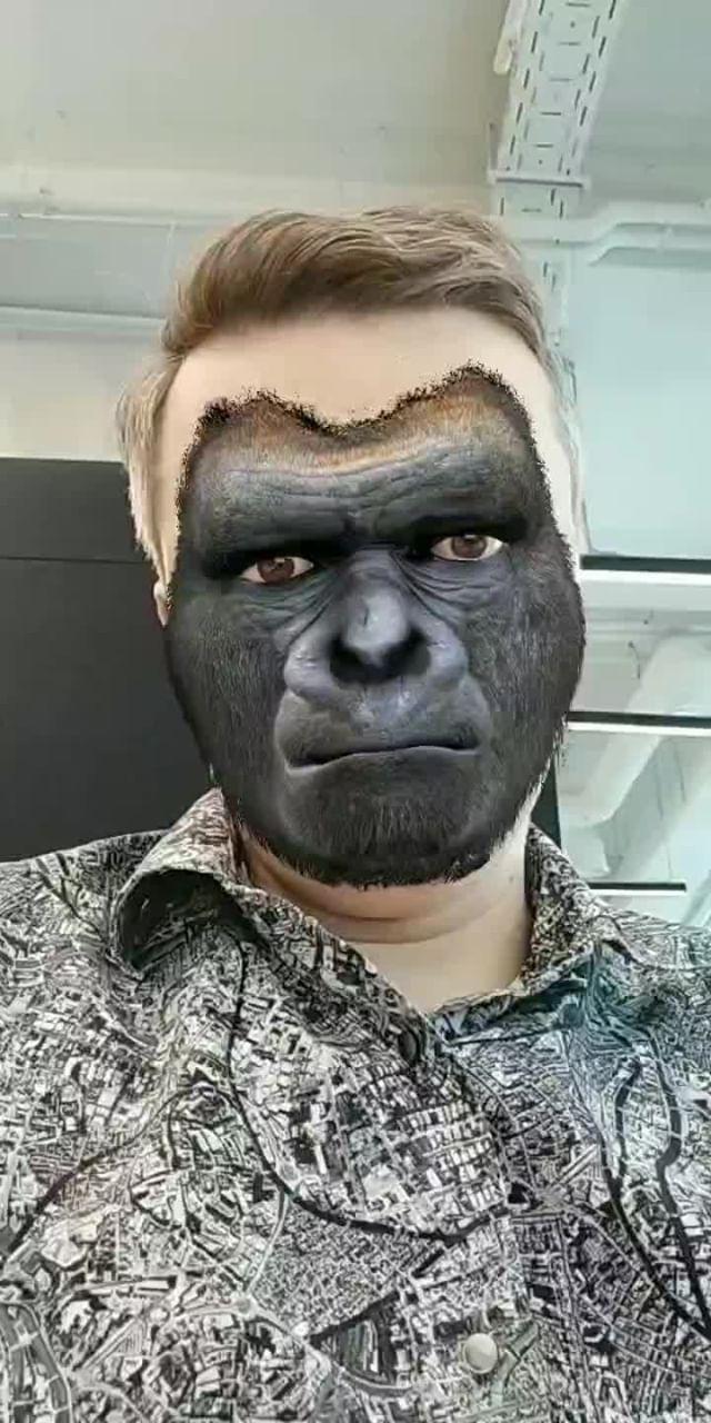 Instagram filter GorillAR